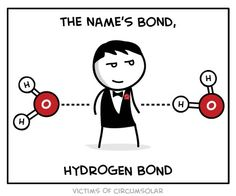 The name's Bond, Hydrogen Bond
