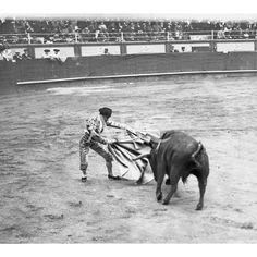 04/1912SEGUNDA CORRIDA. SAN SEBASTIAN. BOMBITA TOREANDO DE CAPA. FOTO: OARSO: Descarga y compra fotografías históricas en | abcfoto.abc.es