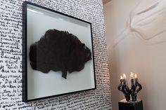 Portfolio | Shellman | Niels van Alphen | Home of Menno Kroon