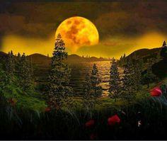 Golden moon.....