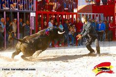 torodigital: Toro del hierro de Madroñiz para la primera tarde...