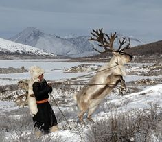 People and wildlife in Mongolia