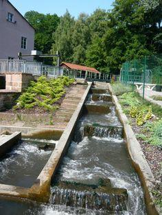 Passe à poissons à Lauterbourg - #Alsace