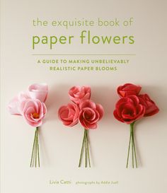 the exquisite book of paper flowers | livia cetti