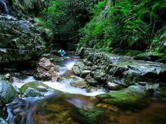 witels river - Google Search Rivers, Westerns, Google Search, River, Lakes
