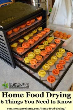 Home Food Drying 6 Things You Need to Know to Dehydrate Food at Home is part of Dehydrator recipes - Learn home food drying basics with this quick guide to food dehydrators, plus tips for food drying and safe storage Includes printable fruit drying guide Best Food Dehydrator, Dehydrator Recipes, Dehydrated Vegetables, Dehydrated Food, Canning Recipes, Raw Food Recipes, Canning Food Preservation, Preserving Food, Canned Food Storage