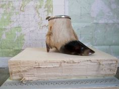 Vintage Taxidermy Deer Hoof Ashtray Antique by TheCuriousMoose