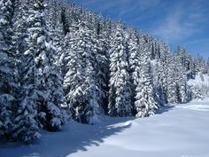 snow photos wallpapers