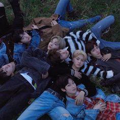 ENHYPEN Border: Day One Concept Dawn Group K Pop Boy Band, Boy Bands, Korean K Pop, Group Pictures, My Land, K Idols, Kpop Groups, Kpop Boy, Photo Cards