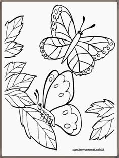 65 Gambar Gambar Mewarnai Terbaik Coloring Pages Colouring Pages