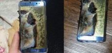 Samsung calculó en US$ 3.100 millones las pérdidas ocasionadas por el fiasco del Note 7 - Diario Financiero