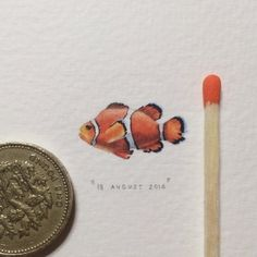 Day 230 : Clownfish | Anemonefish | Nemo Fish | Amphiprion Ocellaris.  22 x 12 mm.