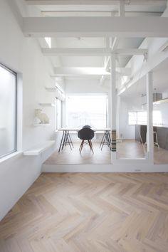 Cat House / SeijiIwamaArchitects