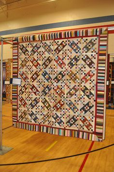 Turnola Trail by Bonnie Hunter from her book Scraps and Shirtails. This is my quilt which was hanging in the Pride of the Prairie Quilt Show! Loved making it!