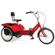 The Beachcombing Electric Tricycle