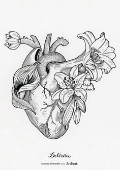 Hear illustration by Marcela Ghirardelli Art Sketches, Art Drawings, Tattoo Bein, Desenho Tattoo, Photocollage, Anatomy Art, Heart Art, Art Inspo, Painting & Drawing