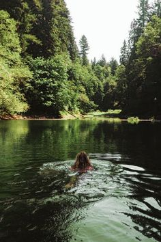 I can't hardly wait to go camping and swimming at Jones Lake! Adventure Awaits, Adventure Travel, Forest Adventure, Oh The Places You'll Go, Places To Visit, Into The Wild, Beach Please, All Nature, Jolie Photo
