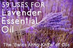 59 Uses for Lavender Essential Oil — The 'Swiss Army Knife' of Oils