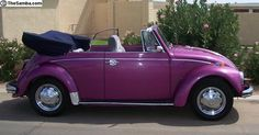 Road trippin - purple vintage convertible vw volkswagon bug car