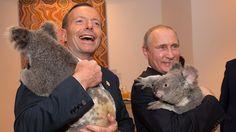 Poet-in met Koala
