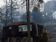 A cabin near the Park Vista hotel after wildfires mixed