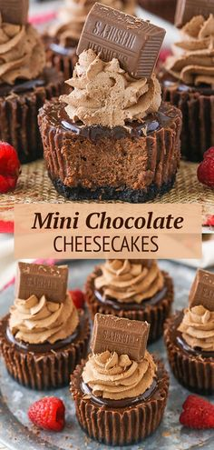 These Mini Chocolate Cheesecakes are smooth, creamy and made with an Oreo cookie crumb crust, chocolate ganache topping and chocolate whipped cream! A classic little treat with plenty of chocolate! Mini Chocolate Cheesecake, Cheesecake Desserts, Mini Desserts, Chocolate Desserts, Chocolate Ganache, Easy Desserts, Delicious Desserts, Individual Desserts, Cooking Tips