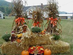 Outside Fall Decorations, Fall Yard Decor, Harvest Decorations, Yard Decorations, Autumn Display, Fall Displays, Door Displays, Fall Harvest, Fall Halloween