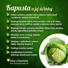 Infografiky Archives - Page 9 of 14 - Ako schudnúť pomocou diéty na chudnutie Raw Food Recipes, Diet Recipes, Healthy Recipes, Dieta Detox, Healing Herbs, Health And Beauty Tips, Fruits And Vegetables, Natural Health, Healthy Lifestyle