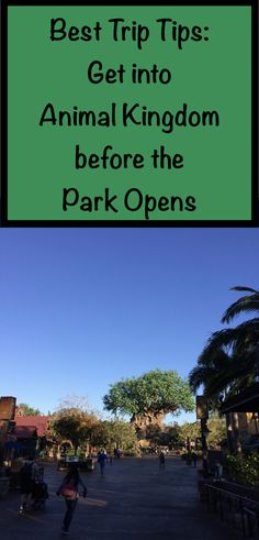 Beat the crowds and get into the Animal Kingdom an hour before the park opens. Details here.