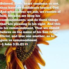 The advantages of non-condemnation of the heart are confidence before God, and receiving whatsoever we ask of him; the reason of which is, because his commandments are kept, and things done which are pleasing to him, 1 John 3:21, the commandments are explained of faith in Christ, and love to one another, 1 John 3:23. --John Gill John 3, Confidence, Believe, Faith, Christian, God, Heart, Dios, Allah