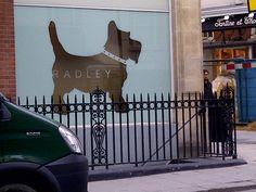 Radley Shop Window