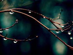 Correio da Júlia Paixão: chovo/chove