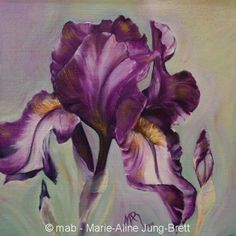 fleurs d'hiris | Galerie d'art: thème floral par MAB, Marie-Aline Jung-Brett, artiste ...