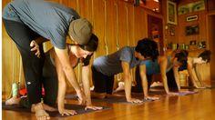 Vinyasa 101: 5 Things You Didn't Know About Vinyasa Yoga | #YogaJournal