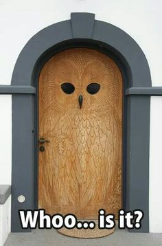 Paint this purple then do the recessed portion of the carving in black or silver. My ultimate witchy door.