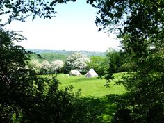 Thistledown is an organically managed family farm and award-winning campsite near Stroud in the Cotswold Area of Outstanding Natural Beauty