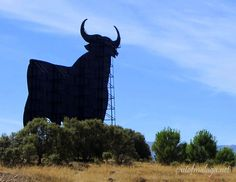 Roadside Advertising    Toro de Osborne, Spain