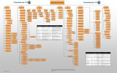 Cyber Attack Taxonomy - Treadstone 71
