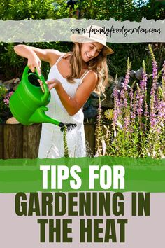 Be a summertime gardening expert with these tips and tricks for gardening in the heat. Learn everything you need to know about summer gardening and get to know what plants grow well in heatwaves. See it all here! #garden #gardeningtips #homestead #homesteadingtips #plantcaretips #summergardening #summer Gardening For Beginners, Gardening Tips, Indoor Gardening, Texas Gardening, Flower Gardening, Vegetable Gardening, Summer Plants, Summer Garden, Organic Mulch