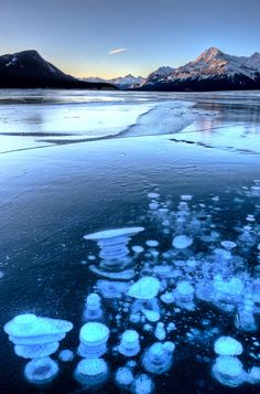 This unique lake Abraham in Alberta, Canada, has cool-looking bubbles frozen near the surface. Click through to see 20 more UNREAL travel destinations! Beautiful Places To Visit, Cool Places To Visit, Places To Travel, British Columbia, Quebec, Banff National Park, National Parks, Montreal, Vancouver