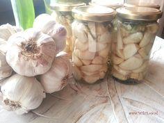 Czosnek kiszony - sprawdź jak łatwo zrobić ten cudowny eliksir zdrowia !   Wiki Rose >>blog