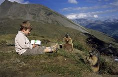 boy with alpine marmots 5