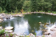 A overview of a 330,000 gallon pond we built.