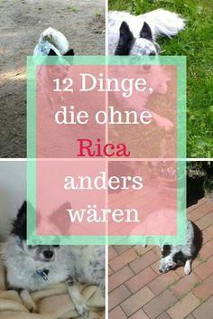 Rica hat am 20. April Geburtstag. Einiges hat sich durch sie verändert. Mehr dazu erfährst du im Blogartikel.