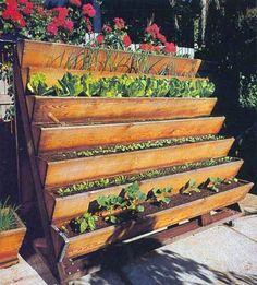 Stair+garden