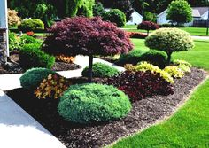Garden Ideas For Small Areas Flower Yards New Design | Best Garden ...