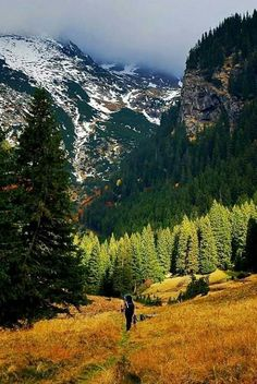 Fagaras, in the Romanian Carpathian Mountains. Carpathian Mountains, Places, Nature, Travel, Beautiful, Naturaleza, Viajes, Trips, Nature Illustration