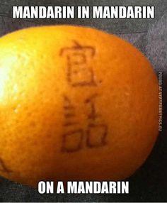 Mandarin in Mandarin on a Mandarin!  www.TouristsFromChina.com *COMING SOON!*