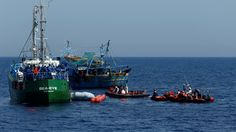 Migrants : cinq ONG refusent le code de conduite présenté par le gouvernement italien