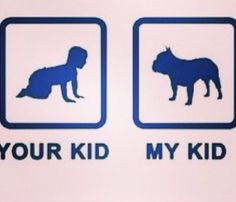 ... Cute !! #dog #animal #kid #inspiration #citation #pet